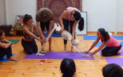Los Asanas del Hatha Yoga